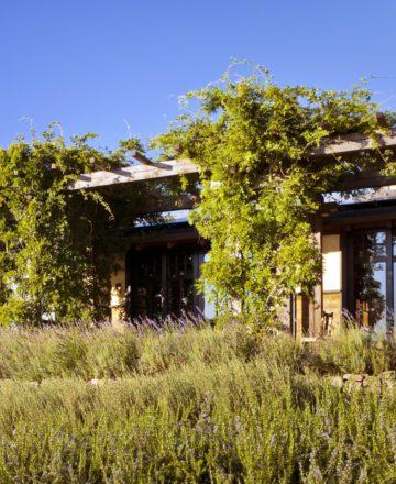 Vineyard Garden Home – Outdoor Terrace